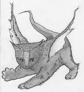 Dragon Kitten
