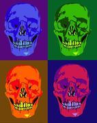 Kranier Warhol-inspirerat gjord i photshop och paint
