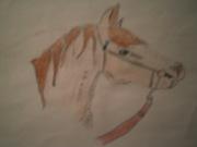 teckna hästar i färg och blyerts