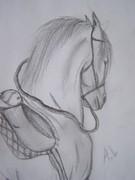 Häst (Närbild)