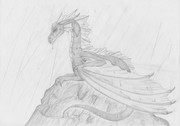 Dragon in the rain