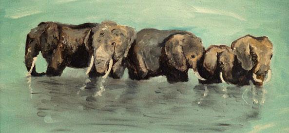 Elefanter i vatten