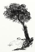 Träd (efter Turner)