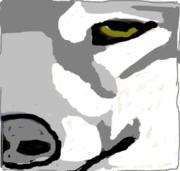 wulf-eye