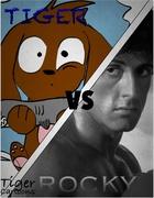 Tiger vs Rocky