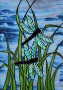 394651_423466171038241_1244254578_n Dragonfly in the moonlight