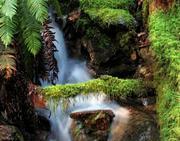 goldstream-park-water