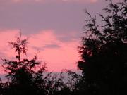 Another Eden Sunset