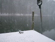 the pond 1-20-09  dock view