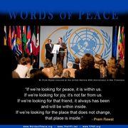 M at UN