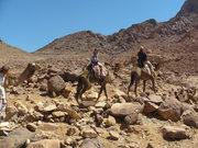 Mt. Moses, Sinai, Egypt