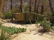 Wadi Feran, Sinai, Egypt
