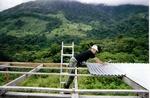 jungle roofer