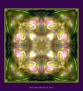 Kaleidoscope photoshop mandala : ms_5_444_700