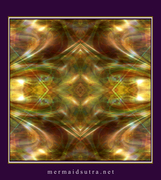 Kaleidoscope photoshop mandala : ms_4_800_700