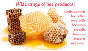 Hone bee products for health
