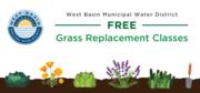 Grass Replacement Class: Culver City