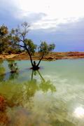 Wetlands in Golden Beach / Υγροβιότοποι στη Χρυσή Ακτή