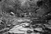 Ascending the Sedona creek bed