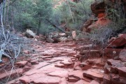 IMG_4987_dried_creek_bed