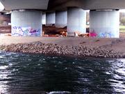 bridge (A40)