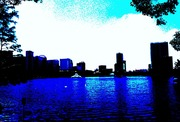 Lake Eola daytime study