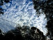 Sky at Sunset-Orlando