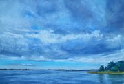 """It's Coming In, Lake Dora""   SOLD"