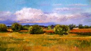 """""""Fields of Gold""""  SOLD"""