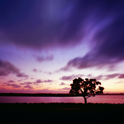 SWEEP | Mission Bay, San Diego, CA , USA