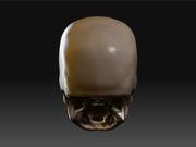 500237_skull_back