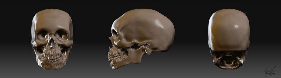 skull-Zbrush