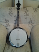 17fret Tonewood Tenor banjo