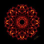 Fire_Dragon_Flower_by_Mystikka