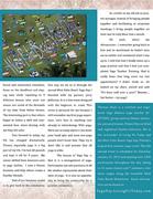 OM Times : SACREDspace : Studio Spotlight - West Palm Beach Yoga Day (pg 2)