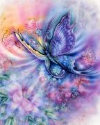butterflycreation