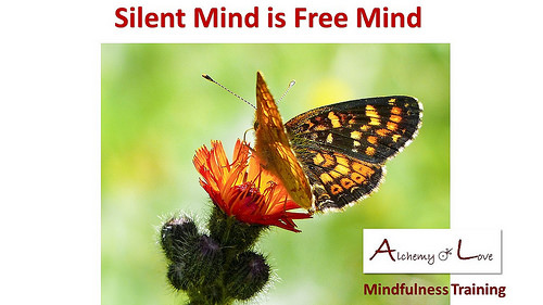 silent free mind AoL Books