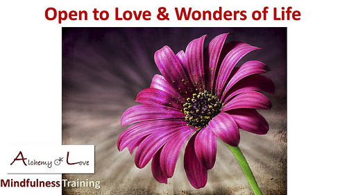 Open to love and wonders of life Guided Love Meditation
