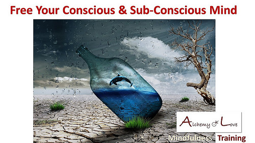 conscious and subconscious mind powers free mind mindfulness training alchemy of love by Nuit