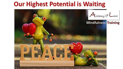peace society highest potential mindfulness training alchemy of love