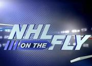 NHL_2008-09_On_The_Fly