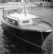 zinnie-1963-1