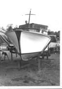Zinnie-vit-1973-4