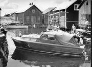 zinnie-marviksgrunnan-1968-1280x960