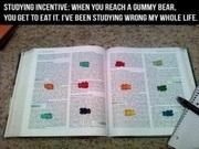 CPA Exam Gummy Bear Method - CPA Exam Journey