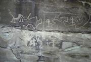 Petroglyphs at Mesa Verde 2