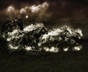Black-Horse-2701