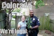 funny_cops_14