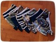 Panties 3