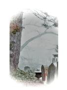 Death By Winter Fog 5x7 Fine Art Print